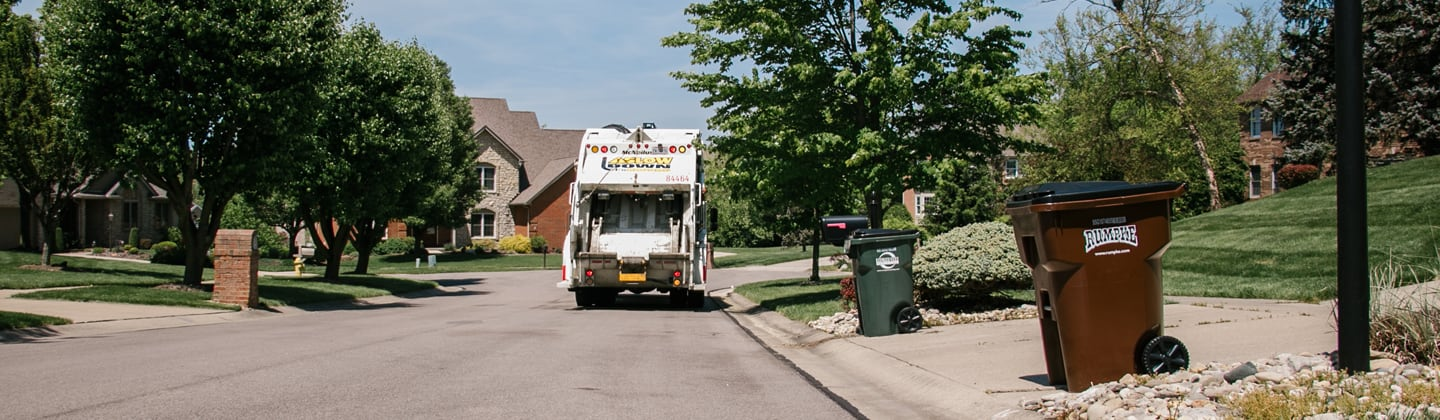 Trash and recycling carts by curbside